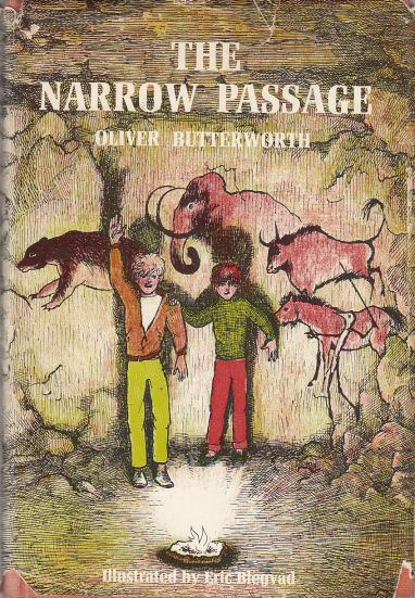 Image for The Narrow Passage